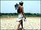 Are Today's Indian Farmers Inferior Versions of the Great Indian Farmers of the Past?
